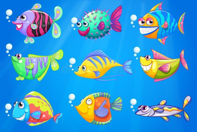 Negen kleurrijke vissen onder het overzees vector illustratie