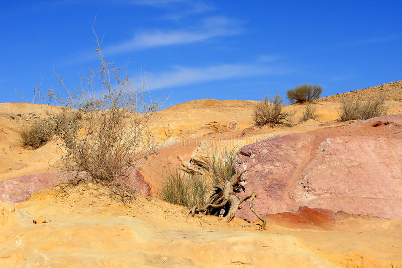Download Negev Desert, Israel Royalty Free Stock Photo - Image: 24331725