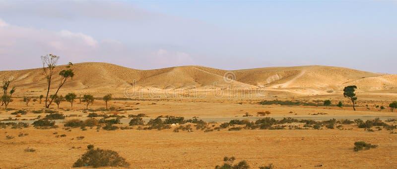 Download Negev Desert In Israel (panorama). Stock Image - Image: 13257505