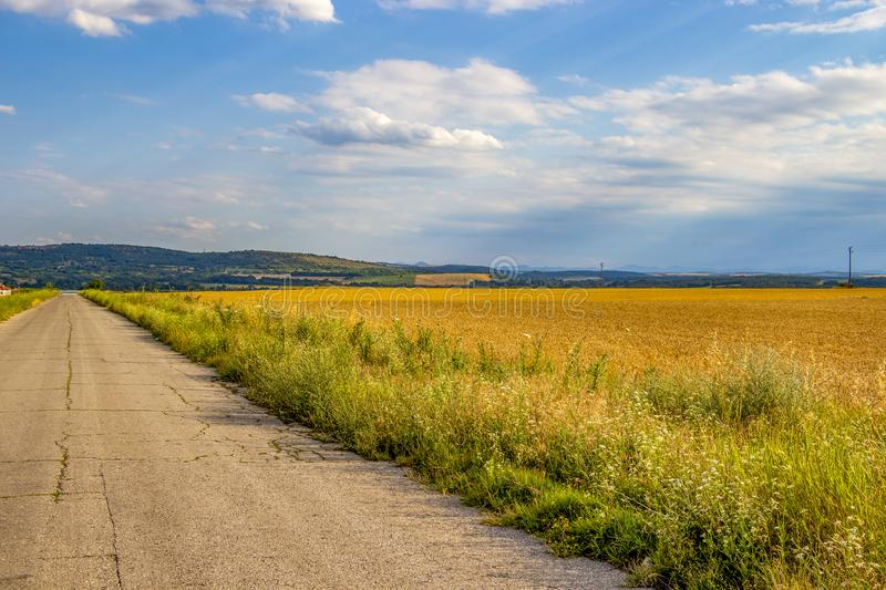 Neglected asphalt country road and a cornfield stock photography