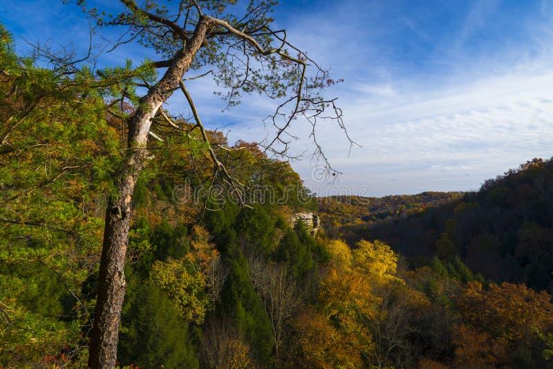A negligência em montes Ohio de Hocking fotos de stock royalty free