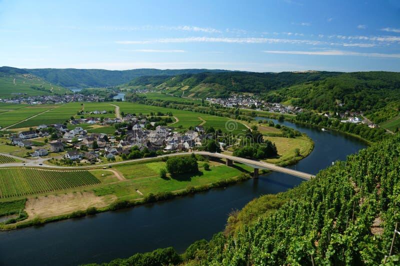 Negligencie: Uma curvatura do vale de Moselle das inclinações de um vinhedo fotografia de stock royalty free