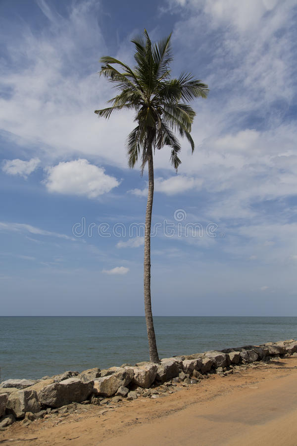 Negombo, Sri Lanka imagem de stock royalty free