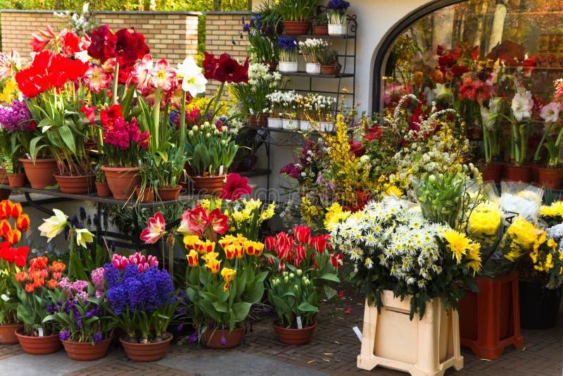 Negozio di fiorista con i fiori variopinti della sorgente fotografia stock