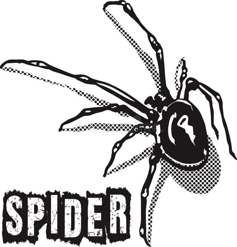 Negro de la araña fotografía de archivo libre de regalías