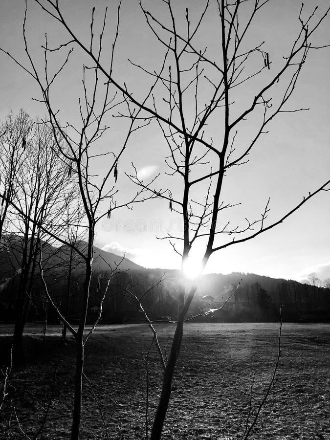 Negro y blanco imagenes de archivo