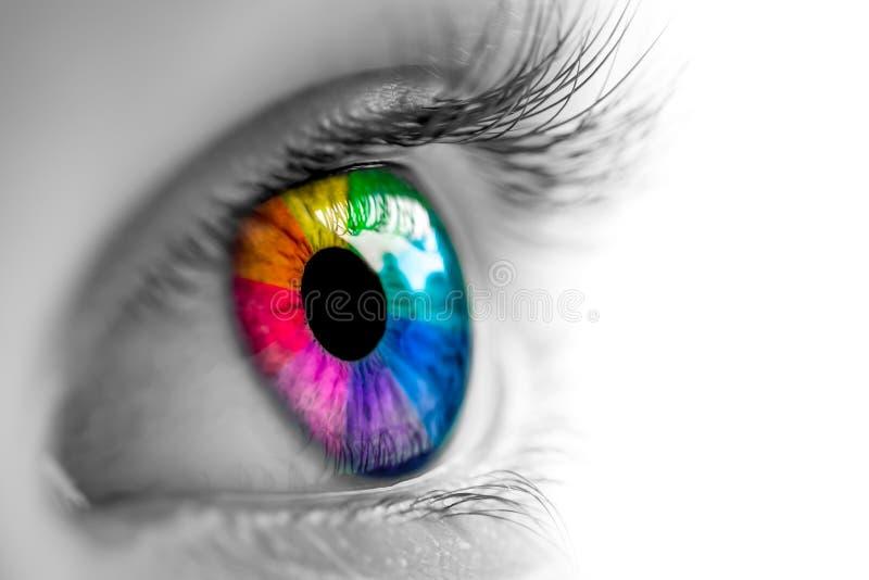 Negro y blanco con el ojo del arco iris foto de archivo