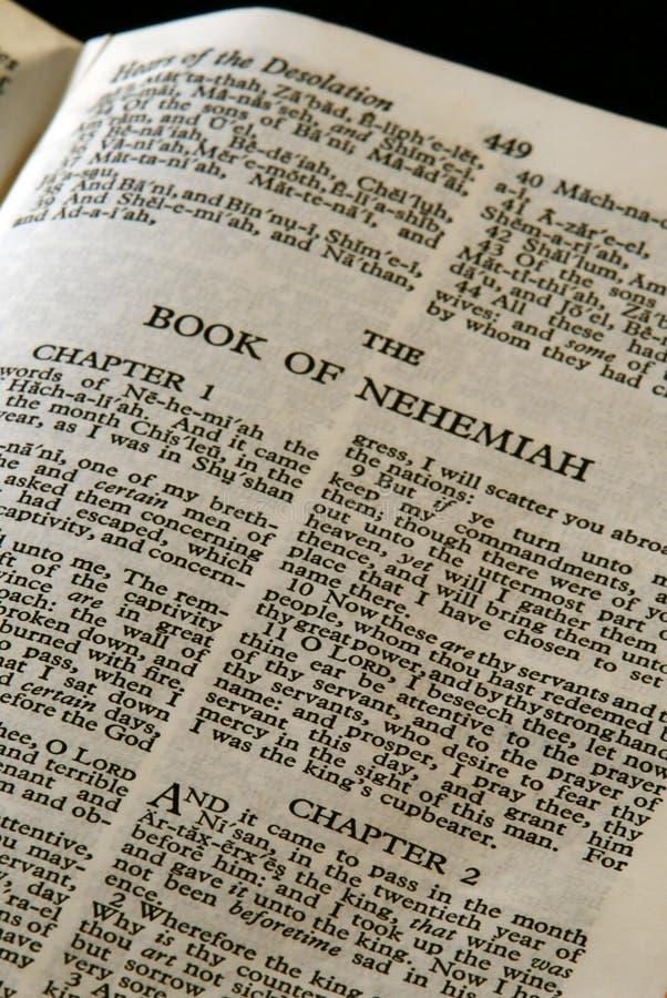 Nehemiah da série da Bíblia foto de stock royalty free