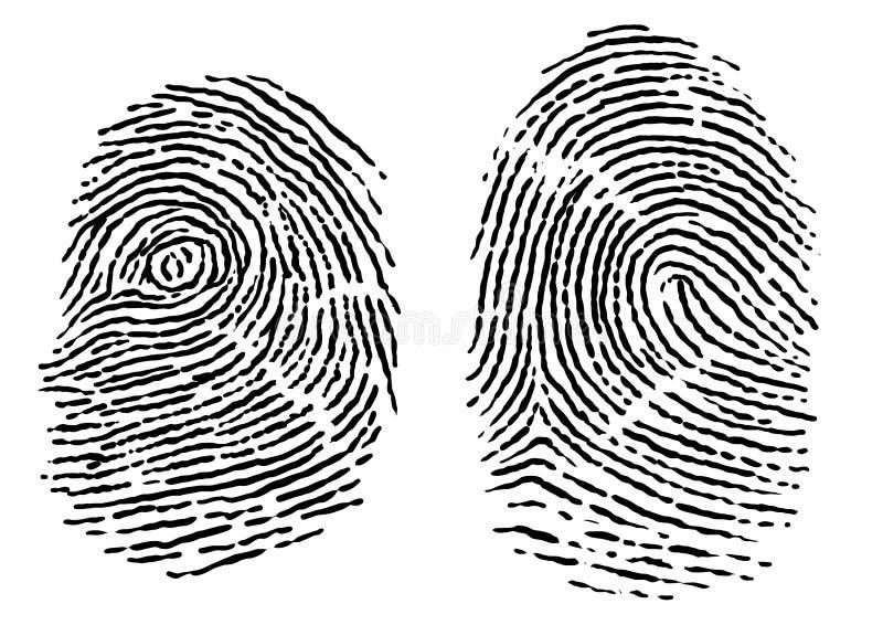 Nehmen Sie von Illustration, Zeichnung, Stich, Tinte, Linie Kunst, Vektor Fingerabdrücke lizenzfreie abbildung