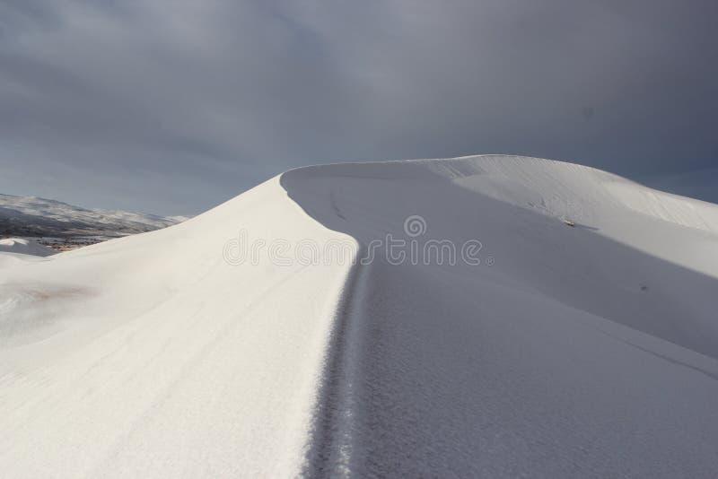 Neige étonnante en dune de l'Algérie photographie stock libre de droits