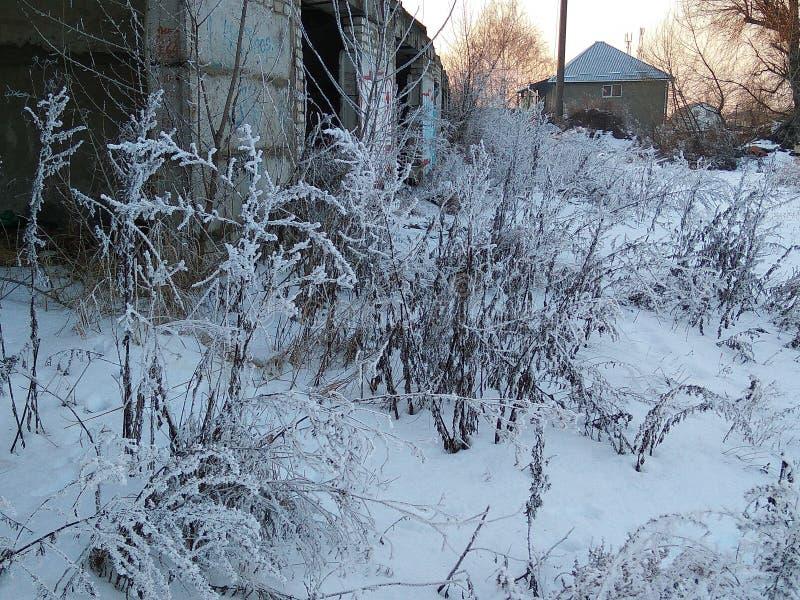 neige image stock