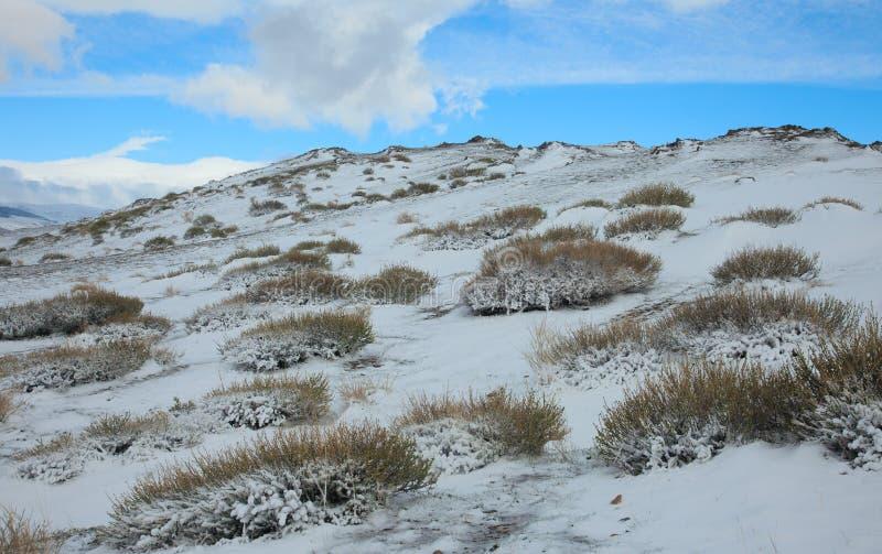 Neige alpine de toundra images stock