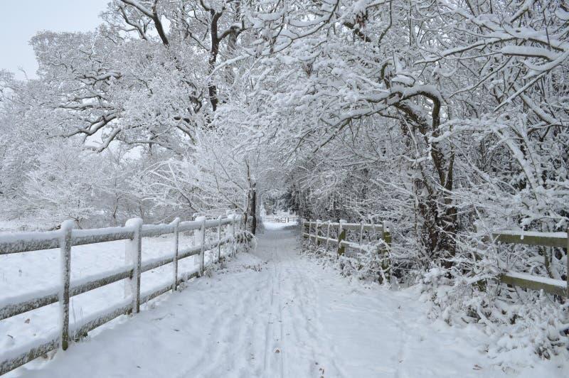 Neige anglaise de l'hiver photo stock