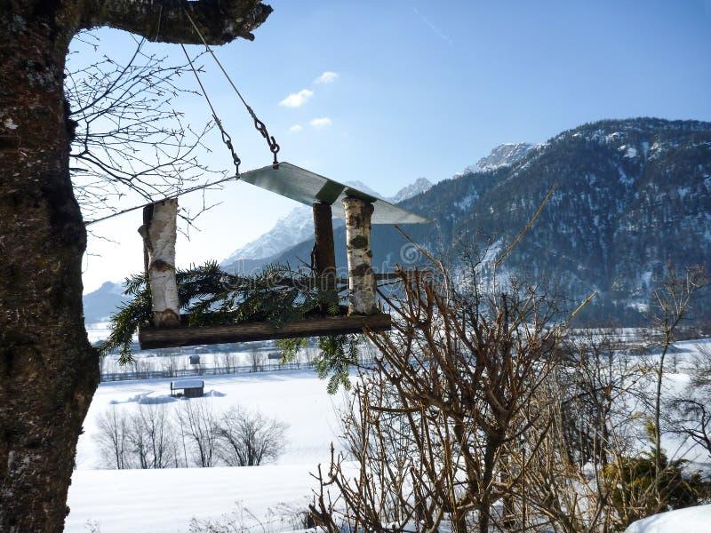 Neige Autriche de montagnes et volière dans l'arbre photographie stock