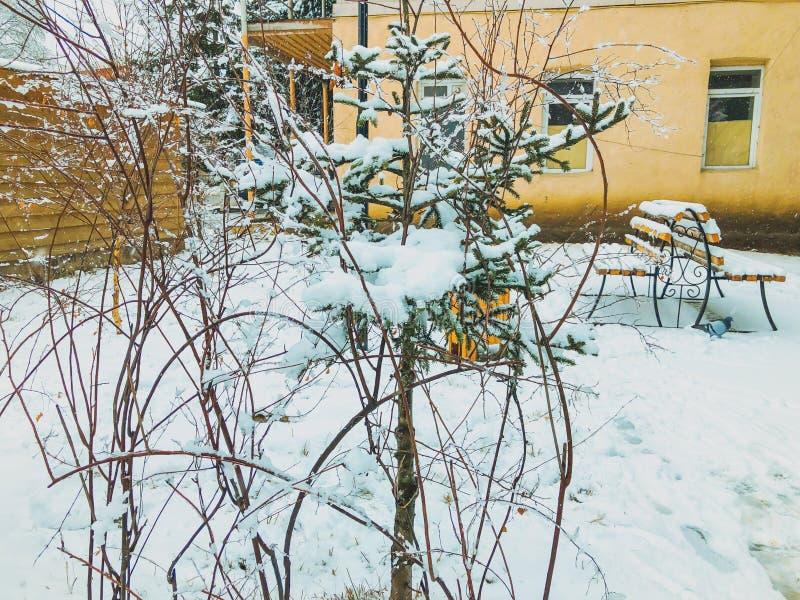 Neige congelée sur un brin d'un arbre Neige sur la rue de la ville bancs de parc couverts de neige Le début de l'hiver dans Bakur images stock