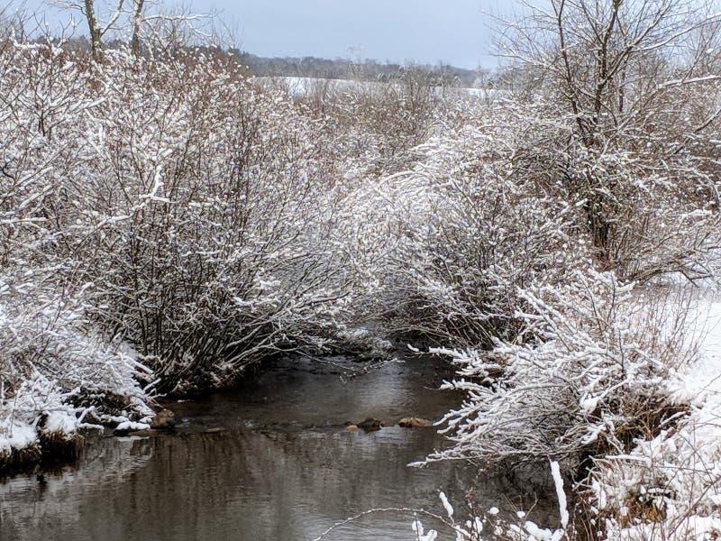 Neige couverte image libre de droits