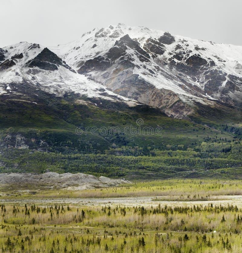 Neige d'été en montagnes images libres de droits
