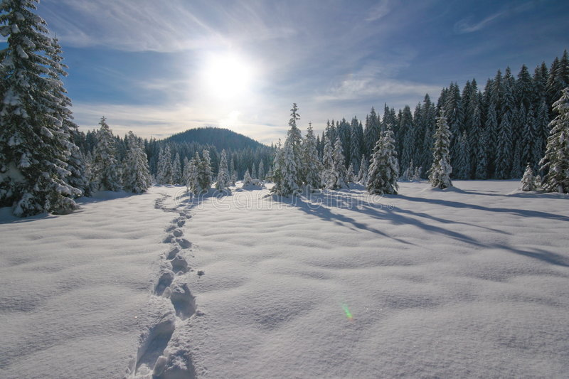 neige d'empreintes de pas photos stock
