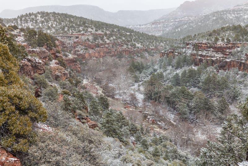 Neige d'hiver de canyon de crique de chêne images libres de droits