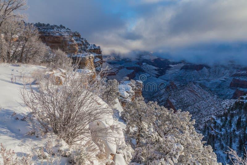 Neige d'hiver de Grand Canyon images libres de droits