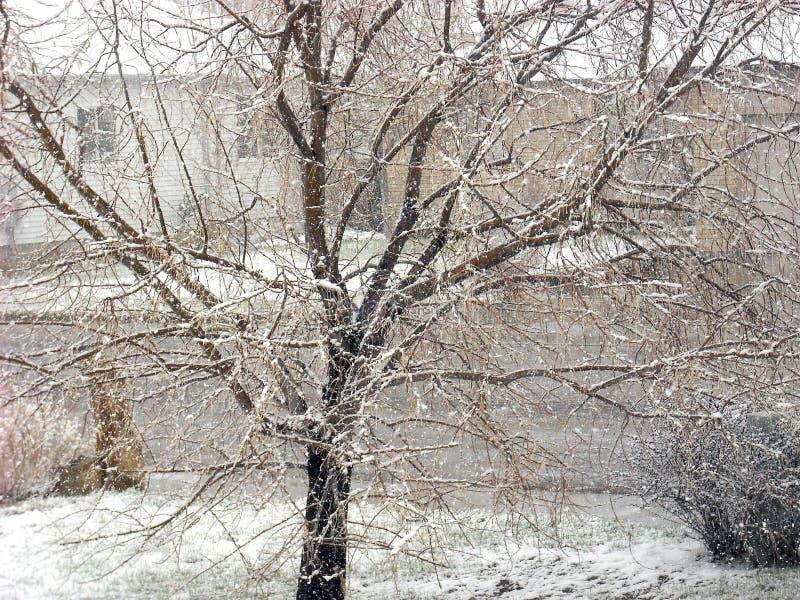 neige d 39 hiver dehors image stock image du nature hiver 90393165. Black Bedroom Furniture Sets. Home Design Ideas