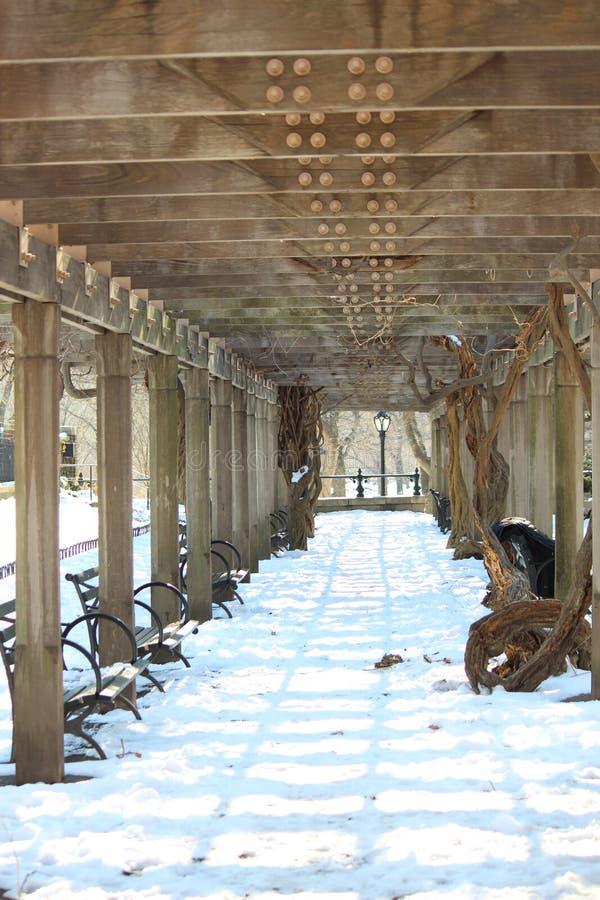 Neige dans le Central Park images libres de droits