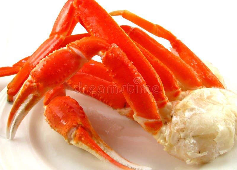 neige de crabe de batterie image stock