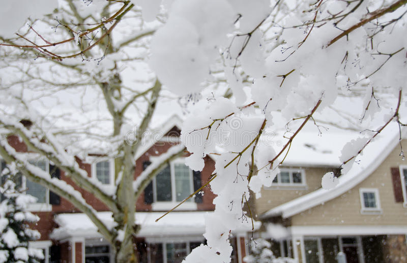 Neige de fonte dans la banlieue de Seattle photos libres de droits