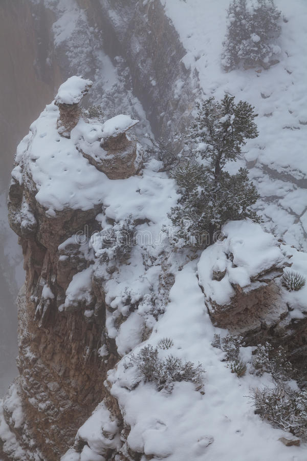 Neige de gorge grande photo libre de droits