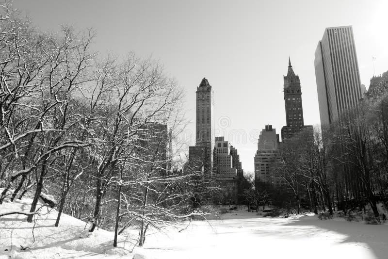 Neige de l'hiver dans Central Park, Manhattan image stock
