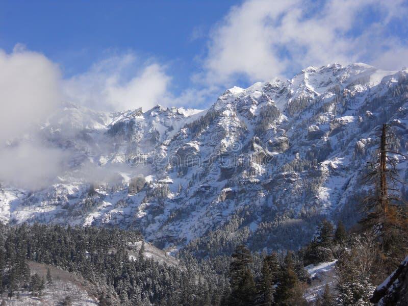 Neige de montagnes du Colorado première images stock
