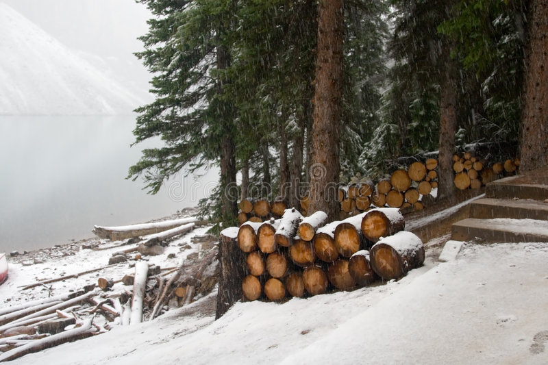 Neige et horizontal de l'hiver photos libres de droits