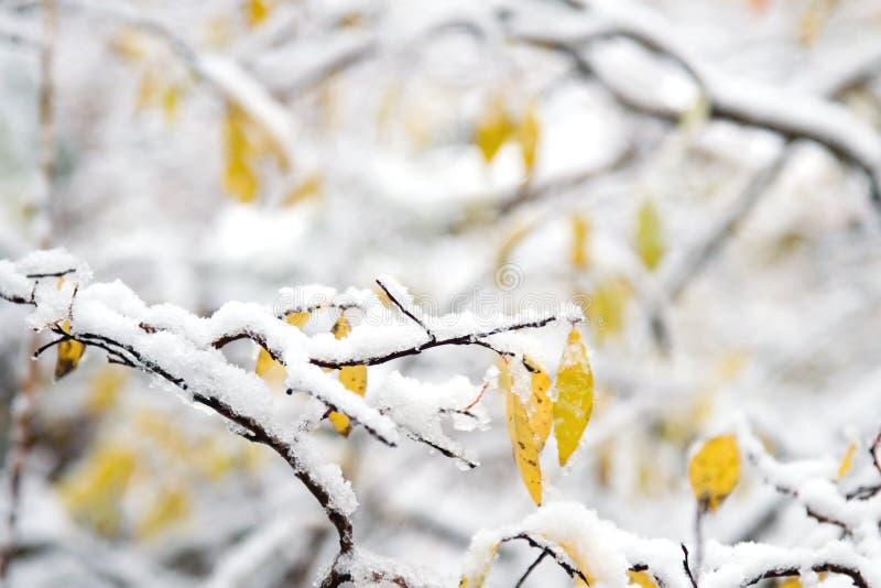 Neige et horizontal de l'hiver photographie stock