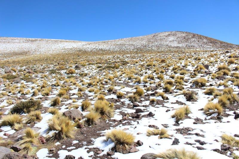 Neige et Sun dans le désert photographie stock libre de droits