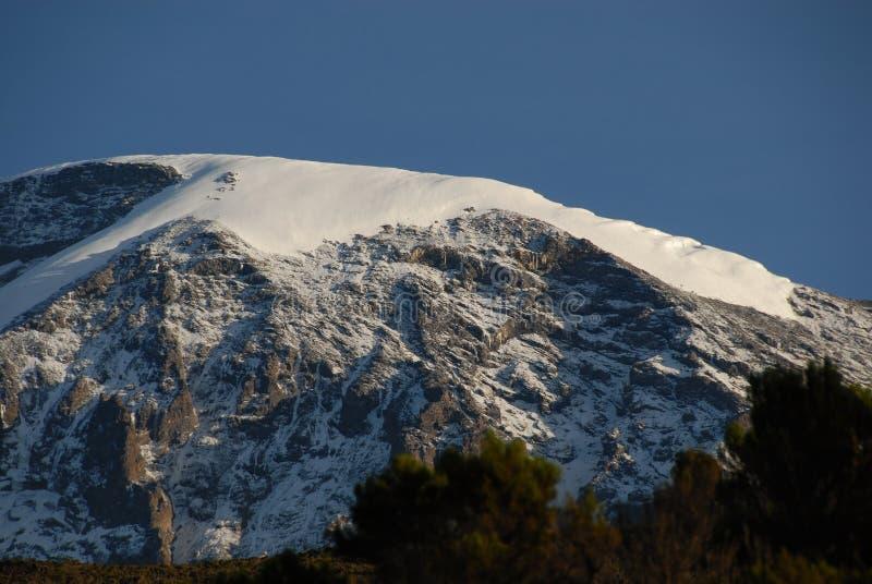 neige fraîche de kilimanjaro photographie stock libre de droits