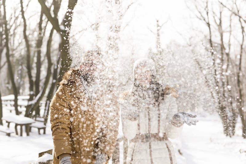 Neige partie de soufflement photo stock