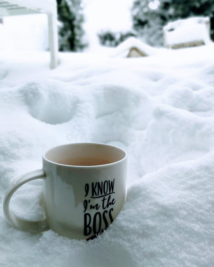 Neige, patron, coffe, gentil blanc photographie stock libre de droits