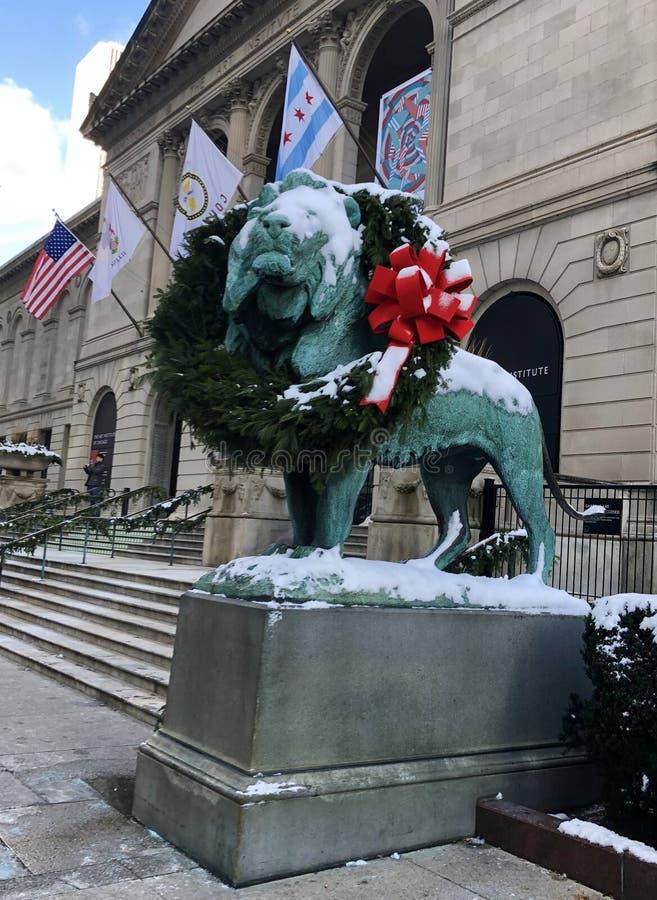 Neige sur les lions du sud tressés images stock