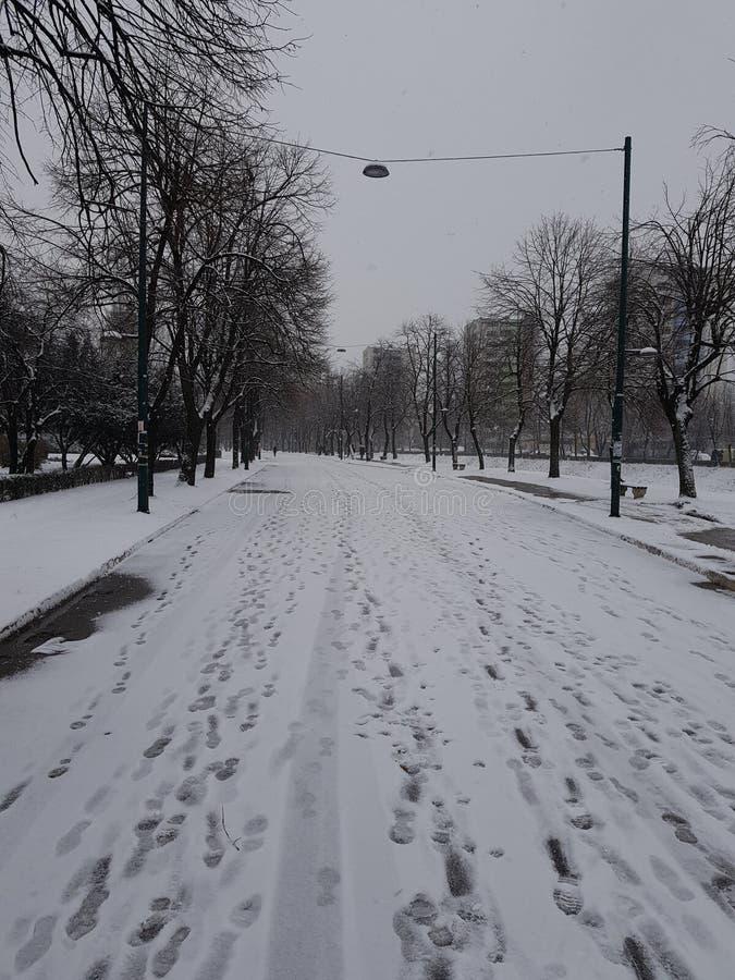 neigeux photos stock