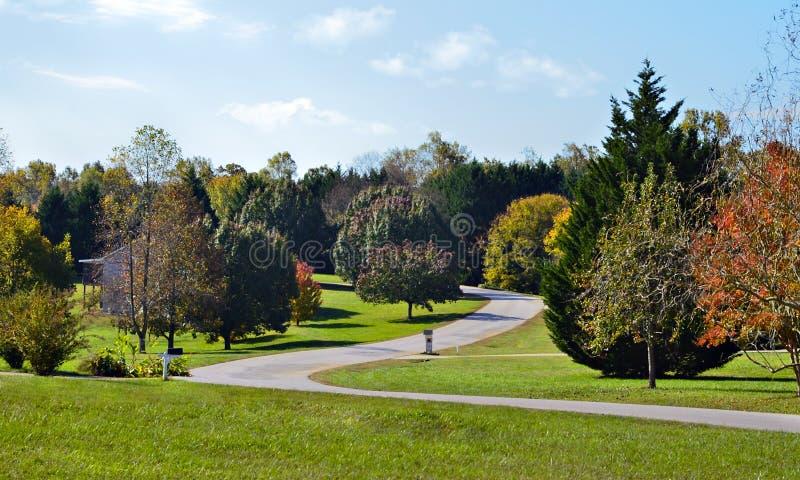 Neighborhood in Fall royalty free stock image