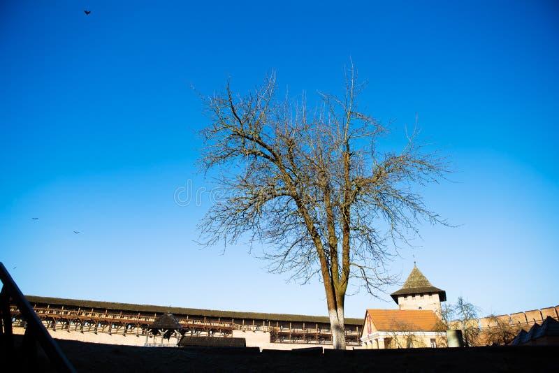 Neighborhood of the old Lubart castle in Lutsk, Ukraine.  stock photo