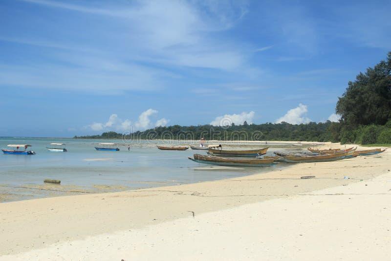 Neil Island(Andaman)--4. stock photos