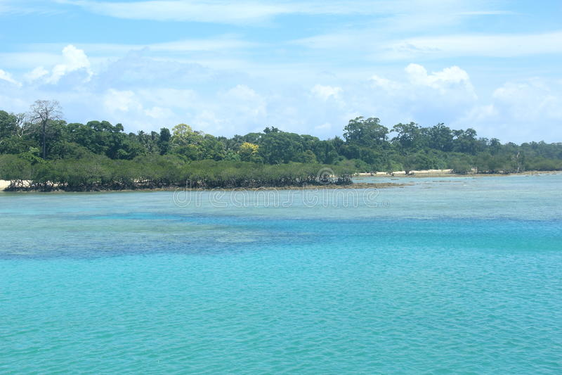 Neil Island(Andaman)-11. stock images