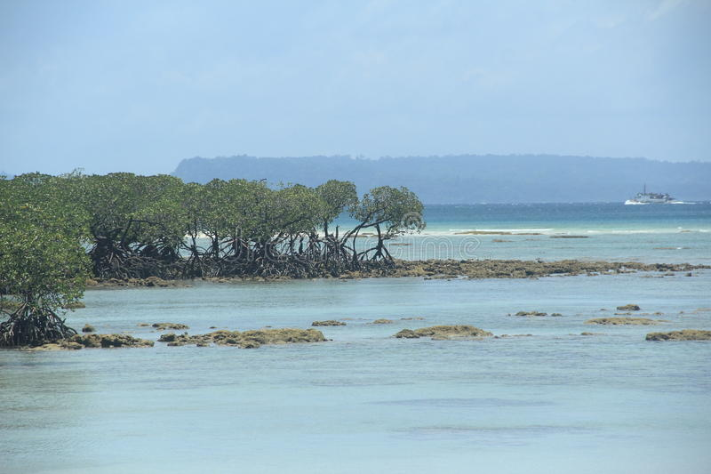 Neil Island(Andaman)-12. stock images
