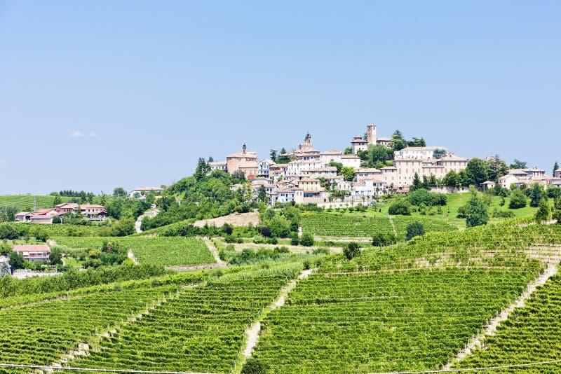 Neive, Италия стоковые фотографии rf