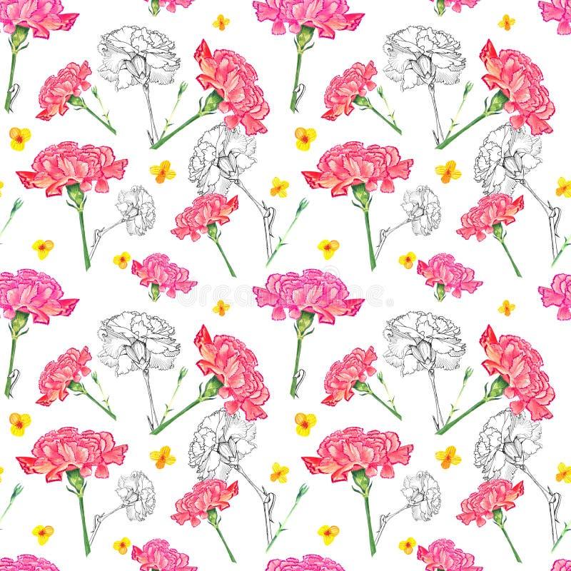 Nejlika- och smörblommablommor på vit bakgrund, blandning av vattenfärgen och hand-dragen illustration för färgpulver diagram royaltyfri illustrationer