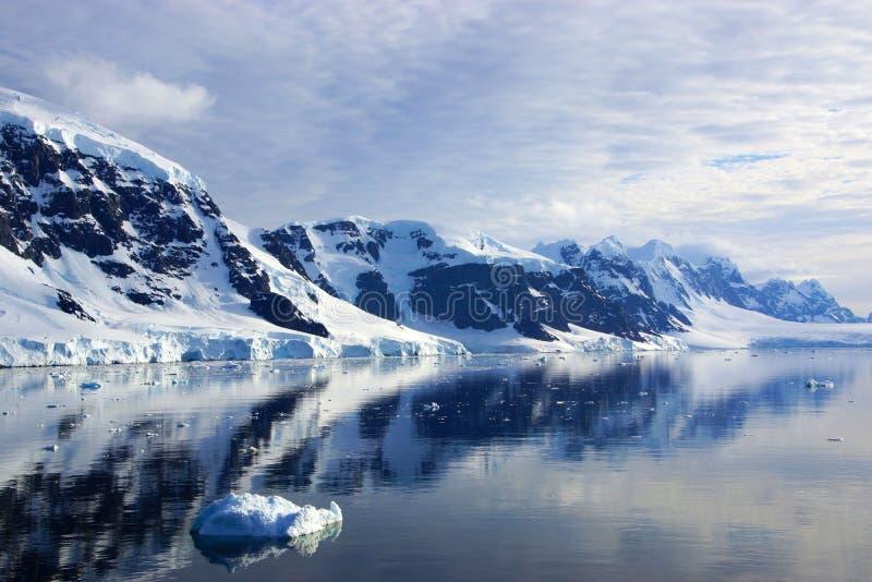 Neko Harbor, a Antártica