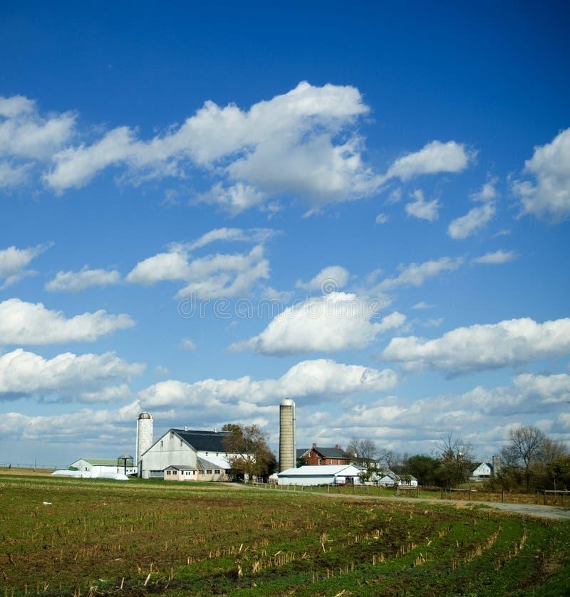 Nel paese sull'azienda agricola immagini stock libere da diritti