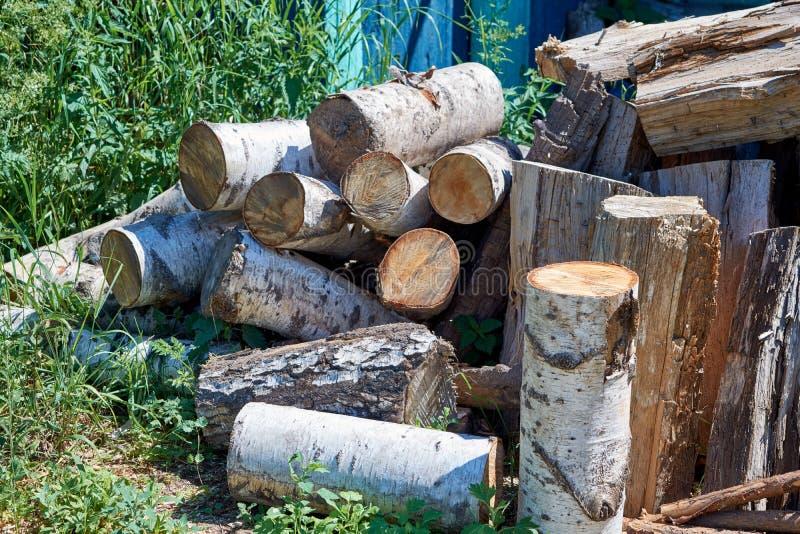 Nel villaggio sull'erba è un mazzo di ceppi della betulla segati per il riscaldamento della stufa immagini stock libere da diritti