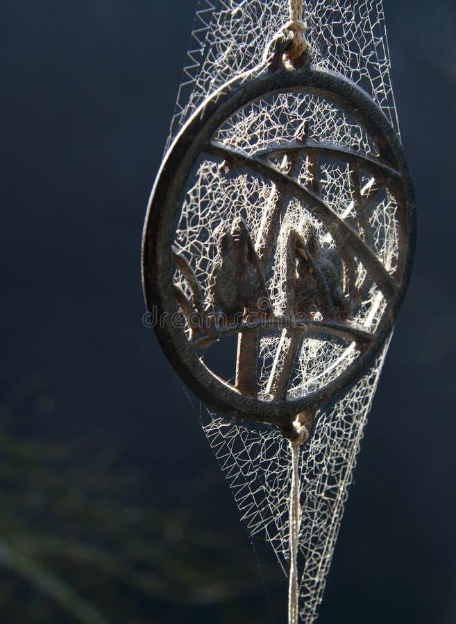Nel Web del ragno fotografie stock